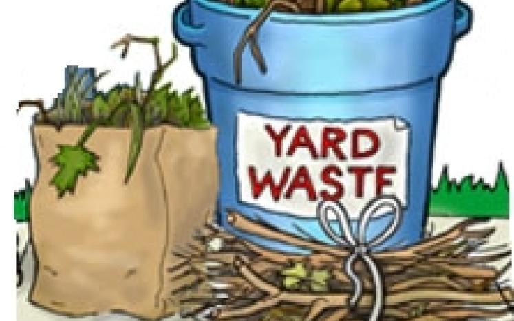 Yard Waste Pick Up October 16